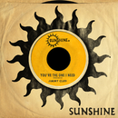 You're The One I Need/JIMMY CLIFF