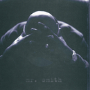 Mr. Smith/LL Cool J