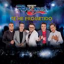Te He Prometido (En Vivo)/Grupo Bryndis