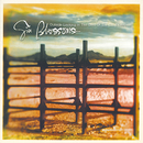 Outside Looking In: The Best Of The Gin Blossoms/Gin Blossoms