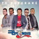 Te Esperaré (En Vivo)/Grupo Bryndis