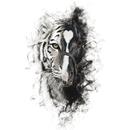 Para Sacarte De Mi Vida (feat. Los Tigres Del Norte)/Alejandro Fernández