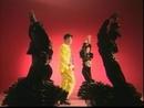 Bao Qing Tian (Karaoke)/Hu Gua