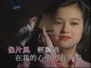 Wang Xing Xing (Music Video)/Christopher Wong, Winnie Lau