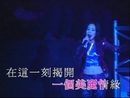 Ai Hen Chan Mian ('95 Live)/Shirley Kwan