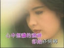 Xin Ruan (Music Video)/Vivian Chow