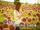 Wo Yao Qing Qing Wei Ni Chang Shou Ge (Karaoke)/Evonne Hsu