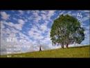 Bao Bei (Subtitle Version)/Karen Mok