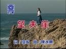 Wang Fu Yai (Karaoke)/Alicia Kao