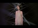 Duan . She . Li/Kelly Chen