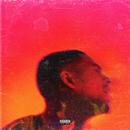 Platinum Fire/Arin Ray