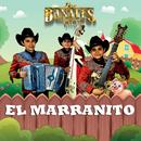 El Marranito/Los Bañales Juniors