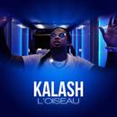 L'oiseau/Kalash