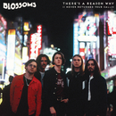 There's A Reason Why (I Never Returned Your Calls)/Blossoms