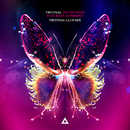 Out My Mind (Club Mix) (feat. Riley Clemmons)/Tritonal