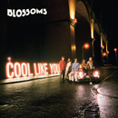 Cool Like You/Blossoms