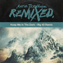 Keep Me In The Dark (Rig 45 Remix)/Anna Ternheim