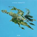 Big Map Idea/Steve Tibbetts