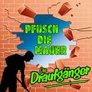 Pfusch die Mauer/Die Draufgänger
