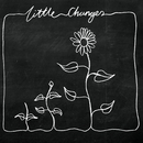 Little Changes (Acoustic)/Frank Turner