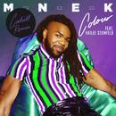 Colour (Cahill Remix) (feat. Hailee Steinfeld)/MNEK