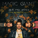 In The Wind (Acoustic)/MAGIC GIANT