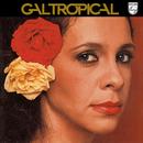 Gal Tropical/Gal Costa