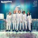 How Long Will This Last? (Single Mix)/Blossoms