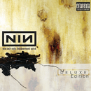 The Downward Spiral (Deluxe Edition)/Nine Inch Nails