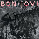 Slippery When Wet/Bon Jovi