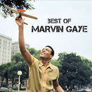 Best Of/Marvin Gaye
