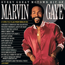 Every Great Motown Hit Of Marvin Gaye/Marvin Gaye & SNBRN
