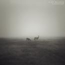 Unverzagt/Alice Baldwin