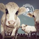 Grainsville/Steve 'n' Seagulls