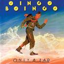 Only A Lad/Oingo Boingo