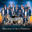 Mientras Tú Me Lo Permitas/La Poderosa Banda San Juan