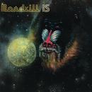 Mandrill Is/Mandrill