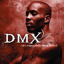 It's Dark And Hell Is Hot/DMX