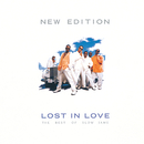 Lost In Love: The Best Of Slow Jams (Reissue)/New Edition