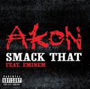 Smack That (feat. Eminem)/Akon