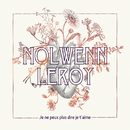 Je ne peux plus dire je t'aime/Nolwenn Leroy