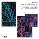 Animal (feat. Tom Chaplin)/Tom & Collins