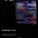 Cherish You/Mikky Ekko
