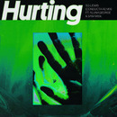 Hurting (Conducta Remix) (feat. AlunaGeorge, Sam Wise)/SG Lewis