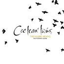 Treasure Hiding: The Fontana Years/Cocteau Twins