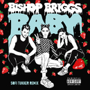 Baby (Sofi Tukker Remix)/Bishop Briggs