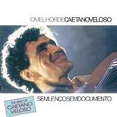 The Best Of Caetano Veloso - Sem Lenço Sem Documento/Caetano Veloso