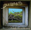 Through The Windowpane/Guillemots