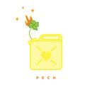 Pech/SLM