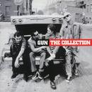 The Collection/Gun